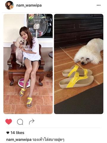 ภาพลูกค้าใส่รองเท้าแตะเพื่อสุขภาพ Klas & Sylph รุ่นกันน้ำ Tracy สีเหลือง